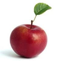 One Reddish Apple Fruit