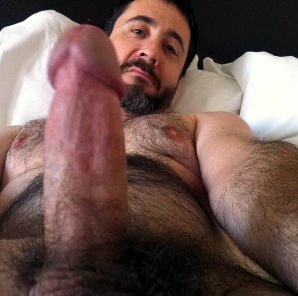 barbudos gay hot