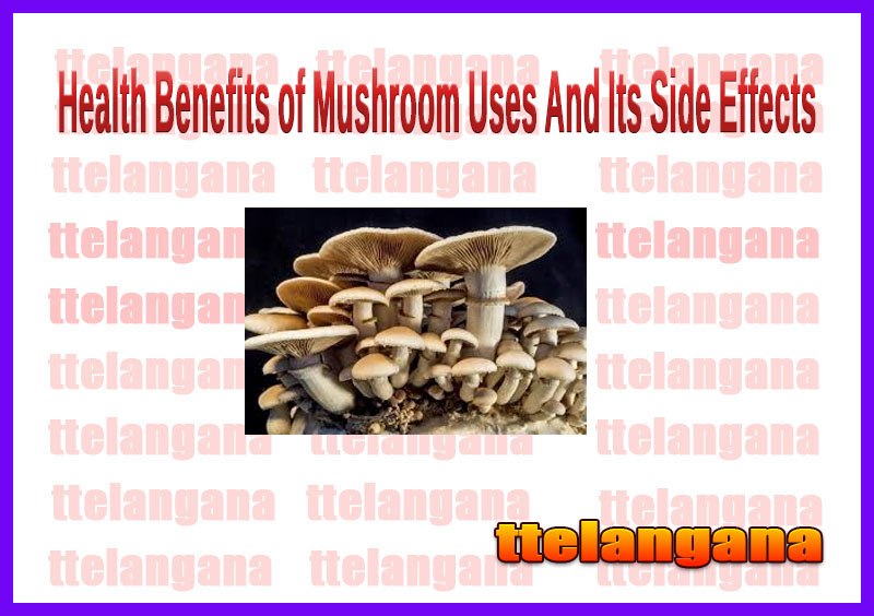 Health Benefits of Mushroom Uses And Its Side Effects