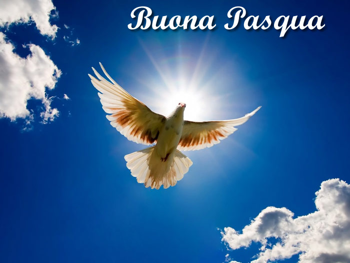 Frasi E Aforismi Sulla Pasqua Scuolissimacom