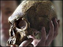 British Museum Aboriginal skull