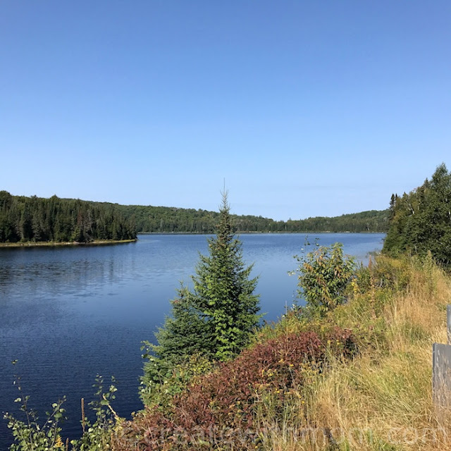 algonquin provincial park ford flex