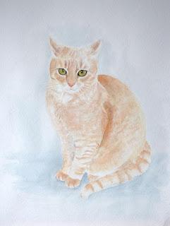 Kater, Aquarell, Tiermalerei, Watercolor, Katzenbild