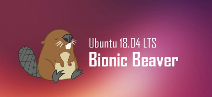 Repository Ubuntu 18.04 Bionic Beaver LTS Server Local Indonesia
