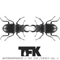 [2013] - Metamorphosiz - The End Remixes Vol. 2 [EP]
