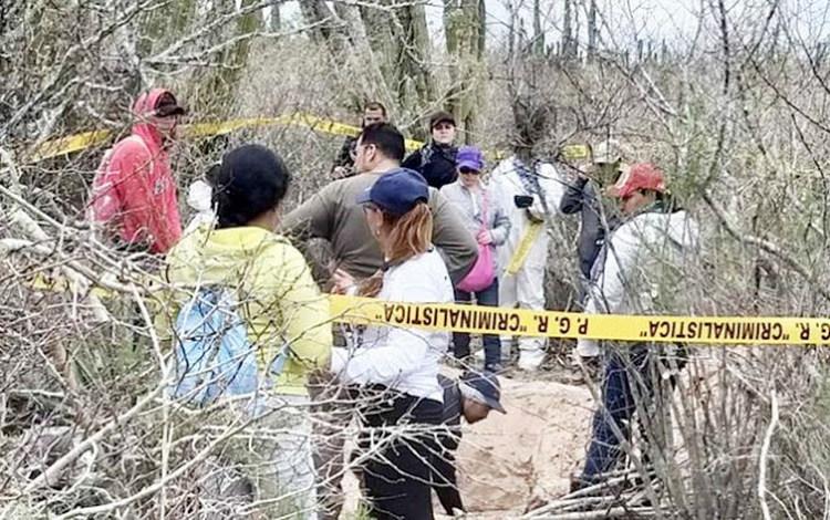 Autoridades localizan un un panteón clandestino en Ahome, Sinaloa, fueron encontrados 6 cuerpos
