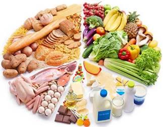 Image result for nutrisi