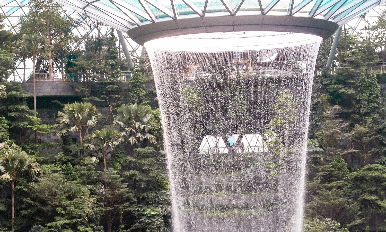 jewel changi airport singapore |  things to see and eat