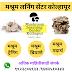 Mushroom Training in Maharashtra
