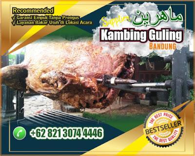 Bakar Kambing Guling Kota Bandung, Kambing Guling Kota Bandung, Kambing Guling Bandung, Bakar Kambing Guling Bandung, Kambing Guling,