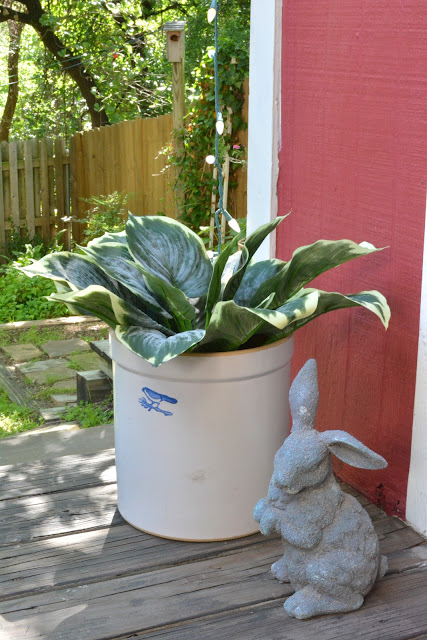 Nearly Natural Faux Hosta