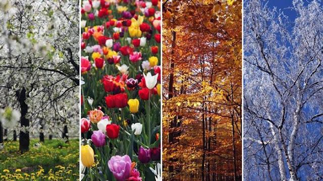 4 musim Jepang