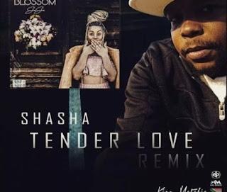 Sha Sha – Tender Love