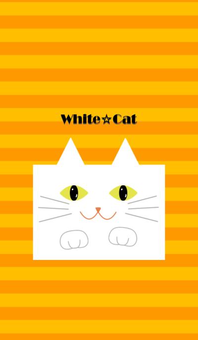 White cat !