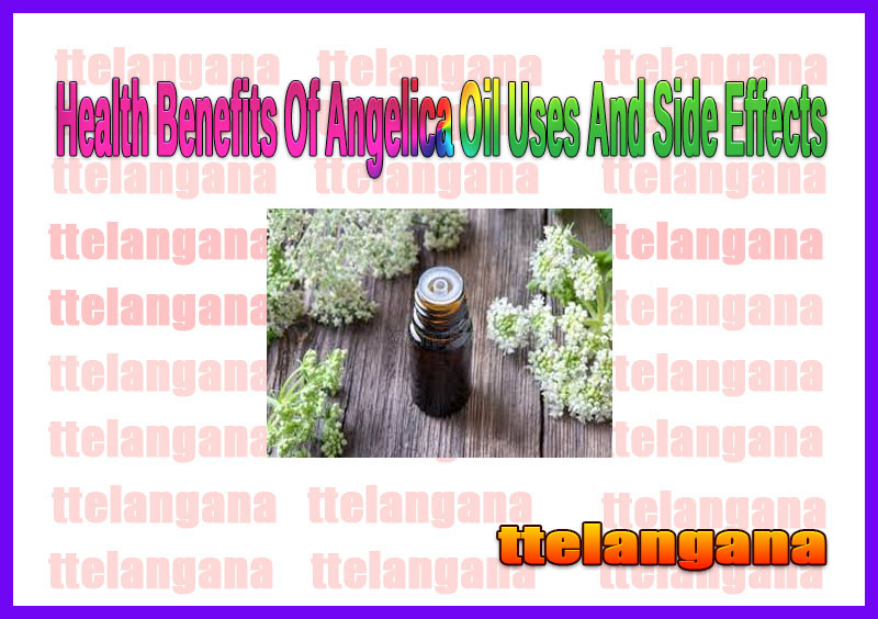Health Benefits Of Angelica Oil Uses And Side Effects