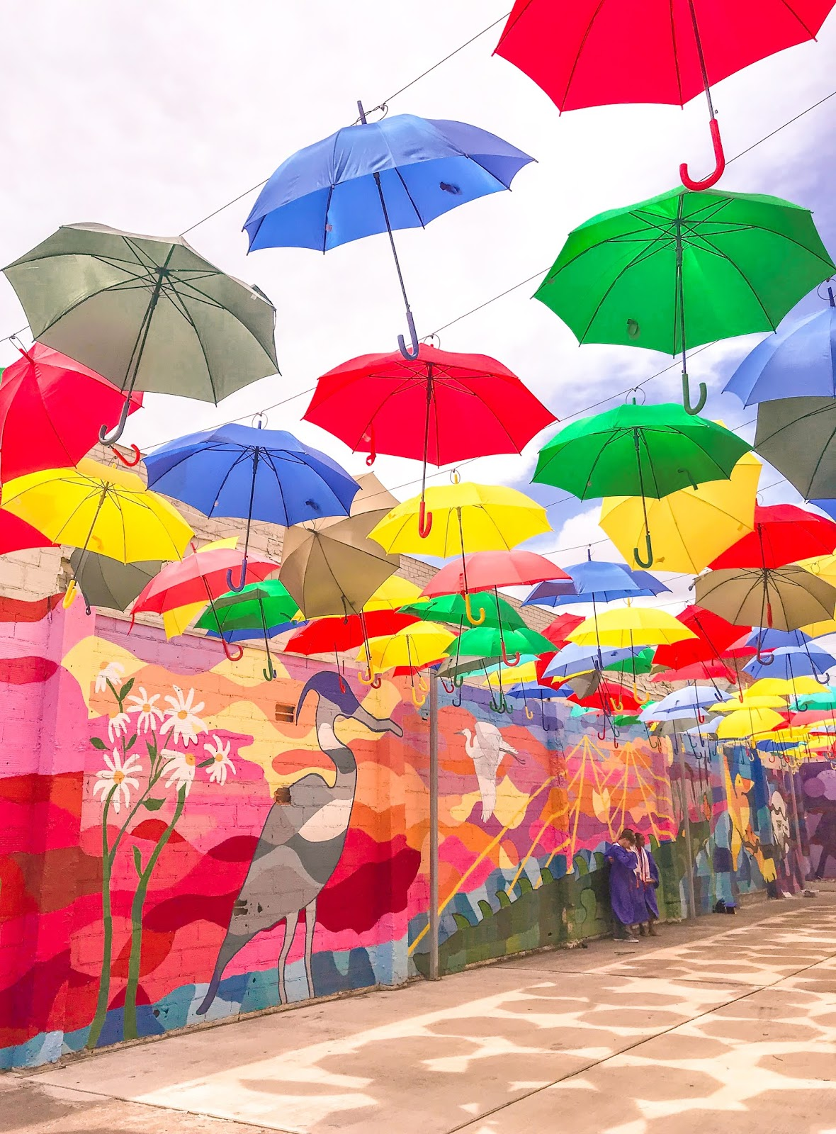 Umbrella Alley in Baytown, TX