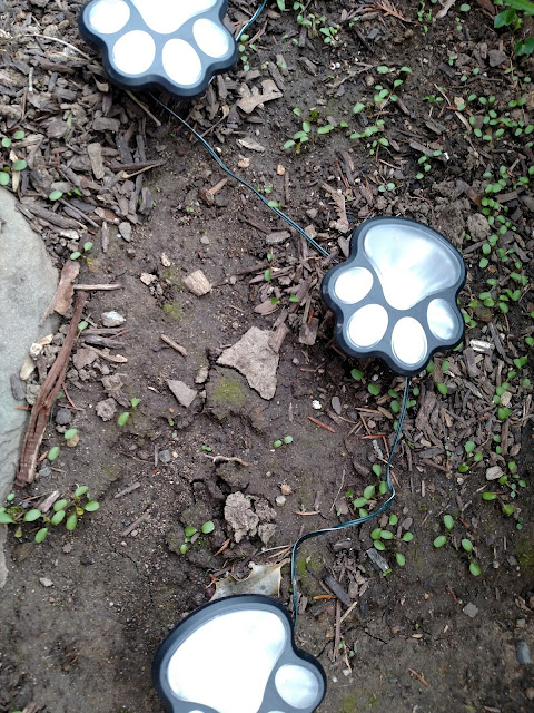 solar powered animal paw lights