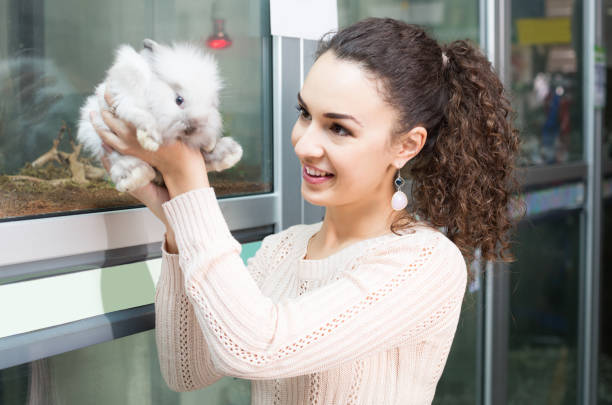 Buying a Chinchilla – Some Mistakes to Avoid