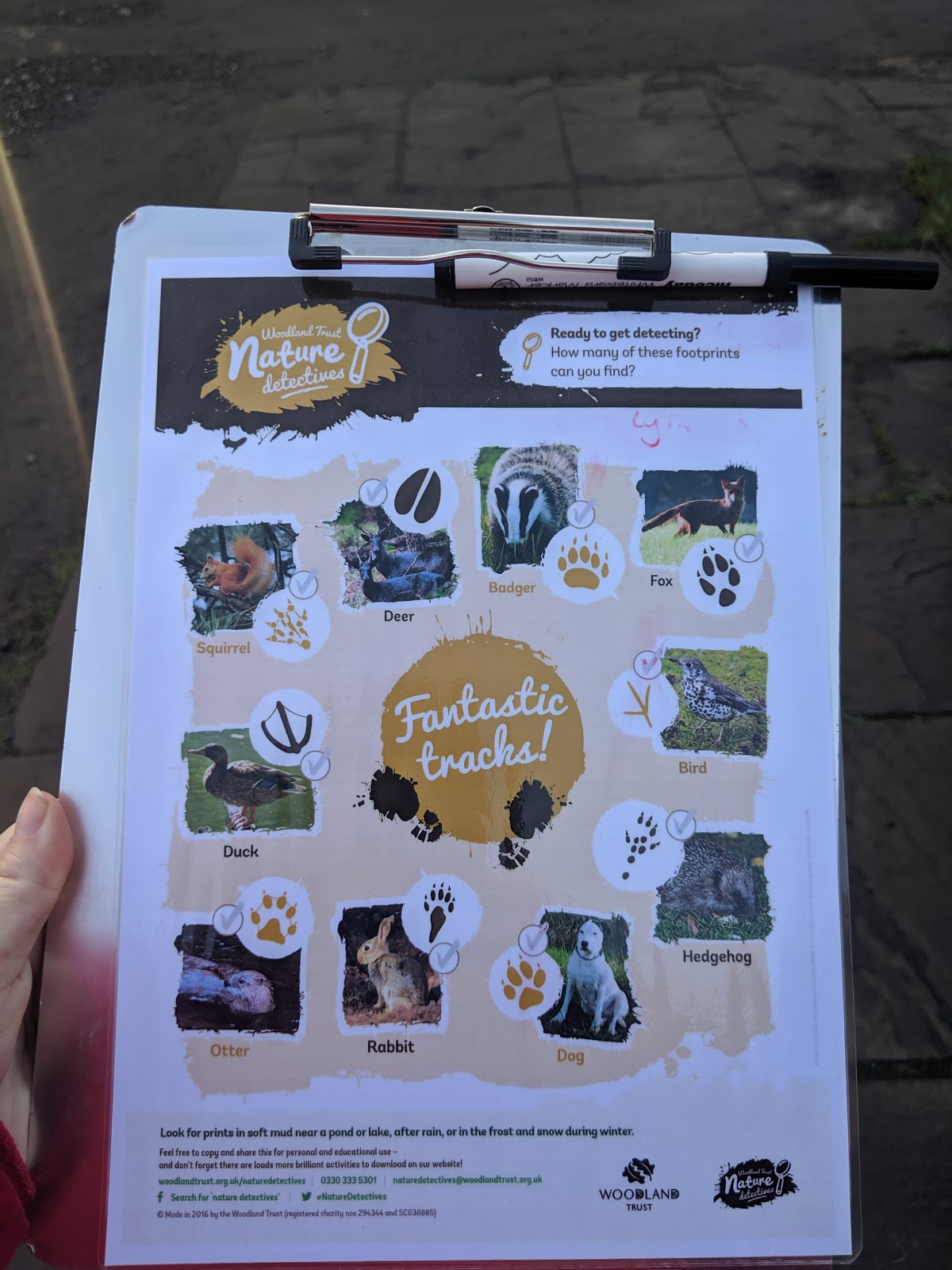 Howick Hall Snowdrop Walk & Sensory Garden - animal tracks worksheet