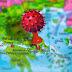 ΚΟΡΙΝΘΙΑ: Τα κρούσματα Κορωνοϊού Σήμερα