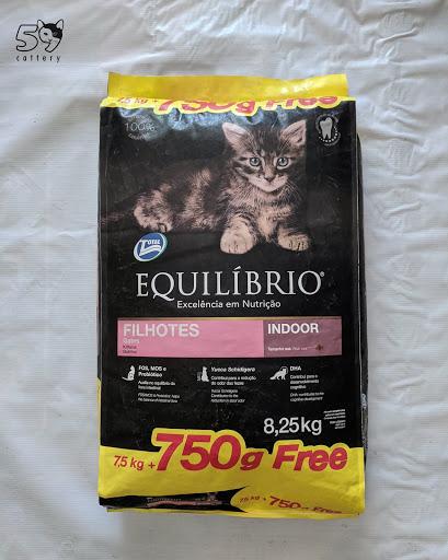 Review Makanan Kucing Equilibrio
