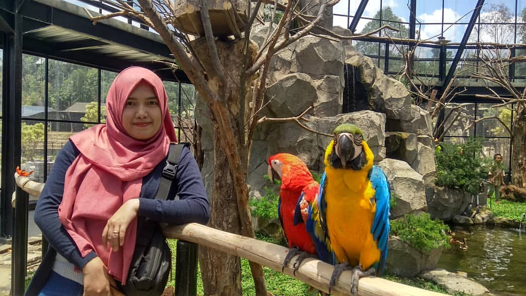 Berinteraksi langsung dengan satwa di Lembang Park Zoo