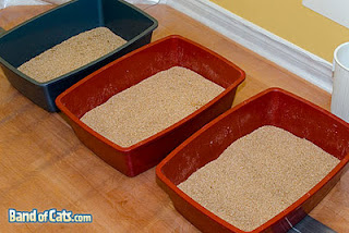 Three different colored litterboxes in a line