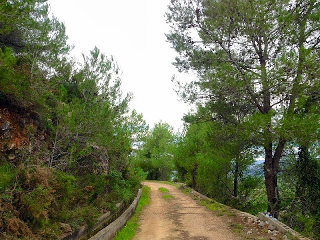 Camí del castell del Rebollet