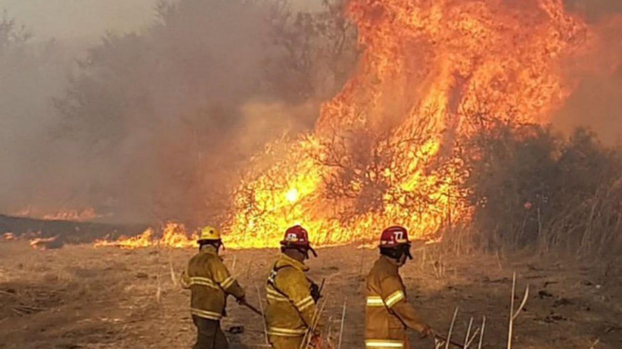 Brigadistas de la Policía Federal se suman al combate a los incendios forestales en Córdoba