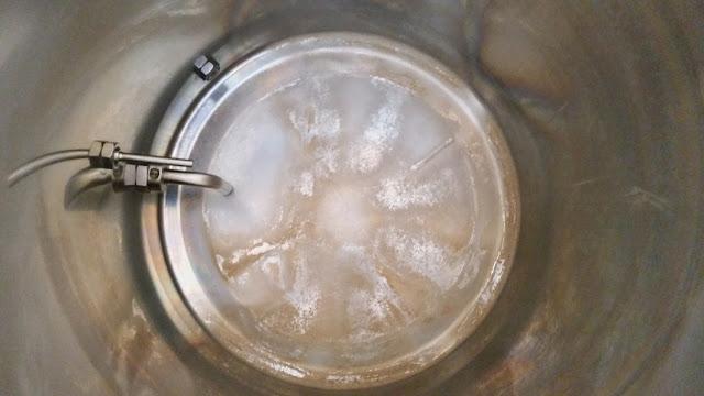 'calcium oxalate' - beerstone buildup