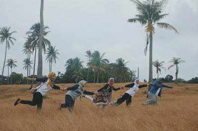 padang ilalang di Pulau Benan