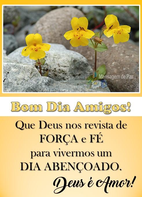 Que Deus nos revista de   FORÇA e FÉ   para vivermos um   DIA ABENÇOADO.  Deus é Amor!