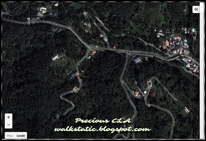 Blogger Di Tengah Hutan