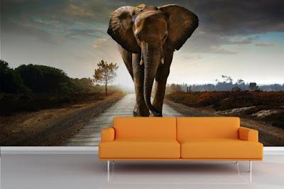 djur tapet elefant fototapet