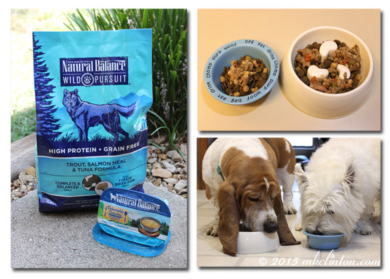 Natural Balance dog food and Fetchin' Catchin's collage