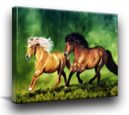 Icelandic Horse Art for Sale