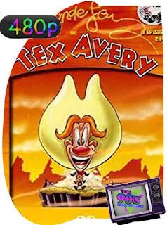El mundo loco de Tex Avery [1997] Temporada 1 [480p] Latino [GoogleDrive] SilvestreHD