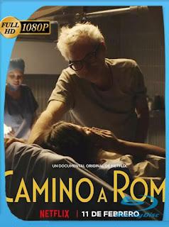 Camino a Roma (2020) HD [1080p] Latino [GoogleDrive] SilvestreHD