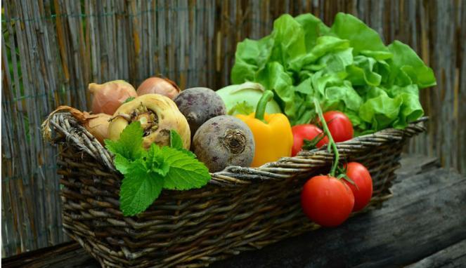 Manfaat Mengkonsumsi Makanan yang Mengandung Vitamin E