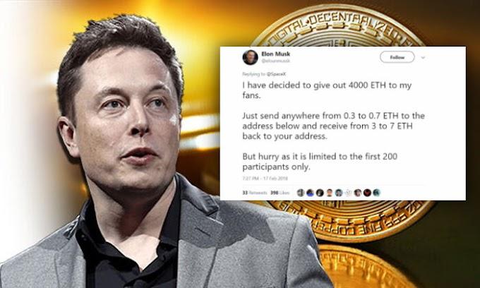 Estafas criptográficas: los informes se multiplican por diez y las cuentas falsas de Elon Musk