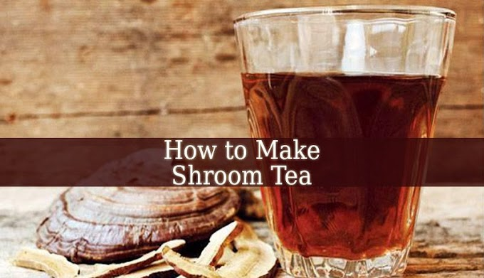 How To Prepare Mushroom Tea