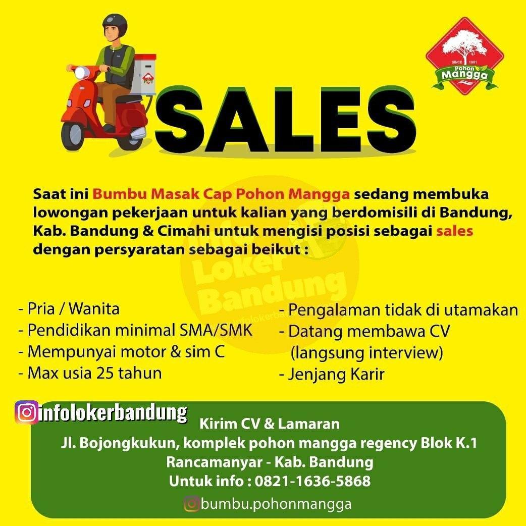 Lowongan Kerja Sales Bumbu Masak Cap Pohon Mangga Bandung Maret 2020