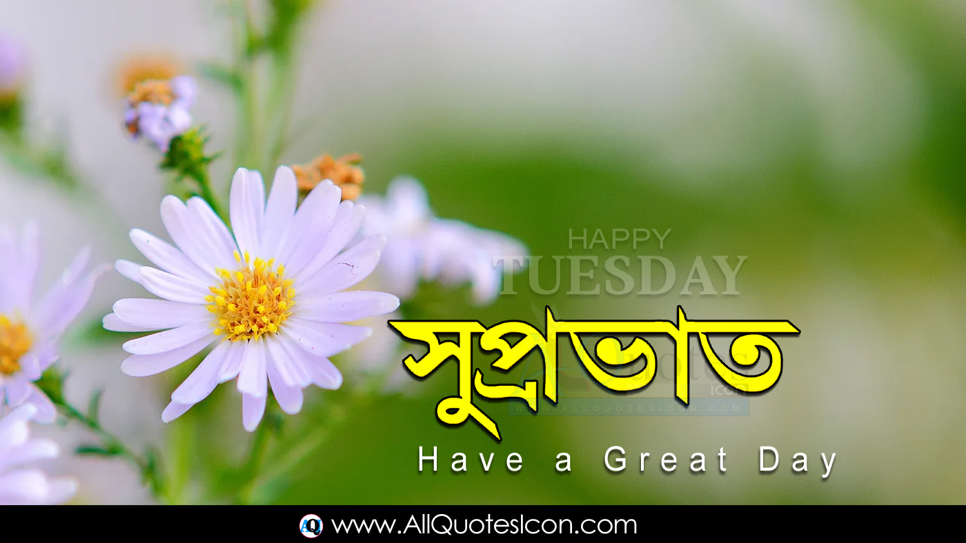 Beautiful Happy Tuesday Good Morning Quotes In Bengali Images Hd Wallpapers Best Life Inspiration Quotes In Bengali Whatsapp Pictures Online Good Morning Bengali Quotes Free Download Www Allquotesicon Com Telugu Quotes