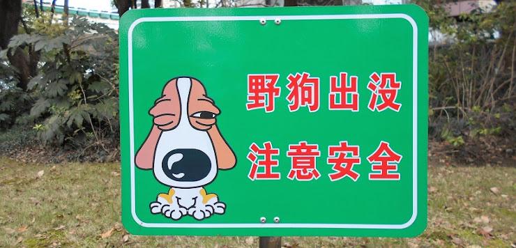 野犬出没安全注意の看板