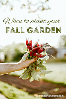 When to plant your fall garden, and what to plant in it.