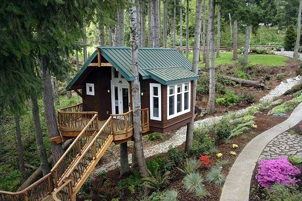 Carol daemon as casas na rvore de pete nelson - Casas en arboles para ninos ...