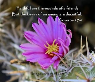Proverbs 27:6