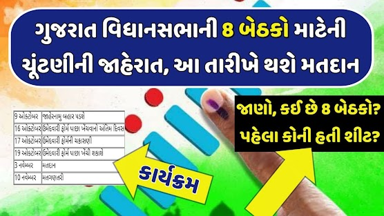 Gujarat Assembly by election Result 2020