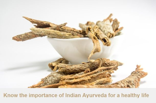 Know the importance of Indian Ayurveda for a healthy life
