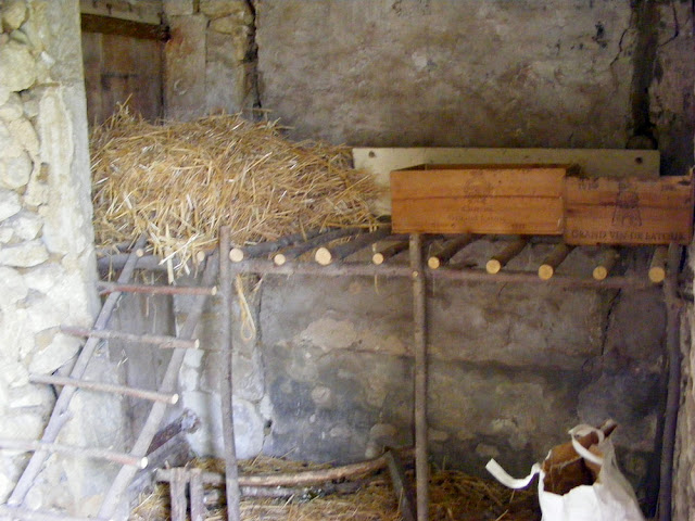 The interior of a garden hen house.  Indre et Loire, France. Photographed by Susan Walter. Tour the Loire Valley with a classic car and a private guide.